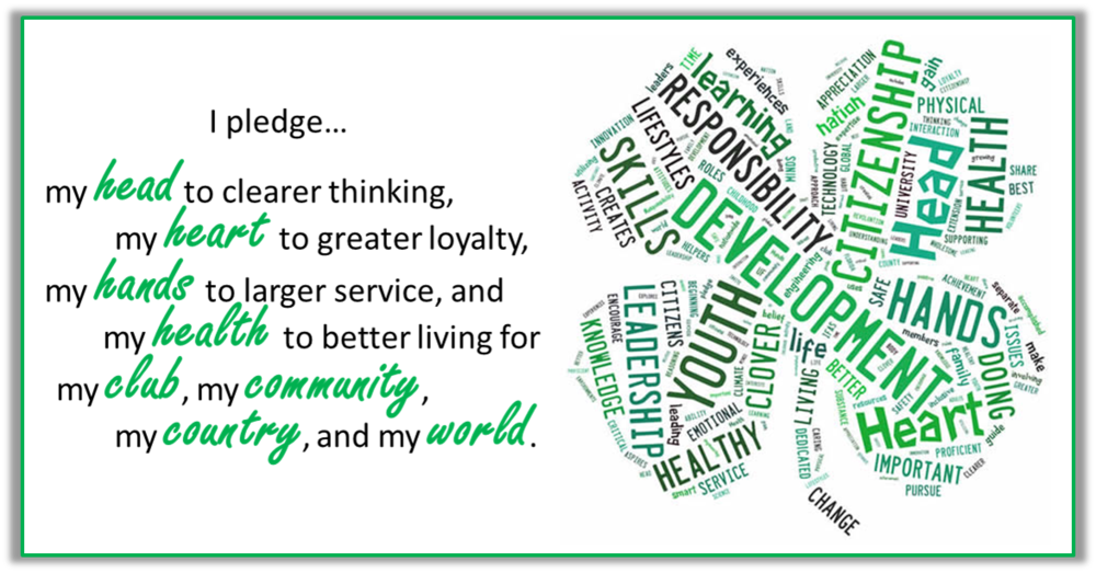 4-H pledge with clover.png