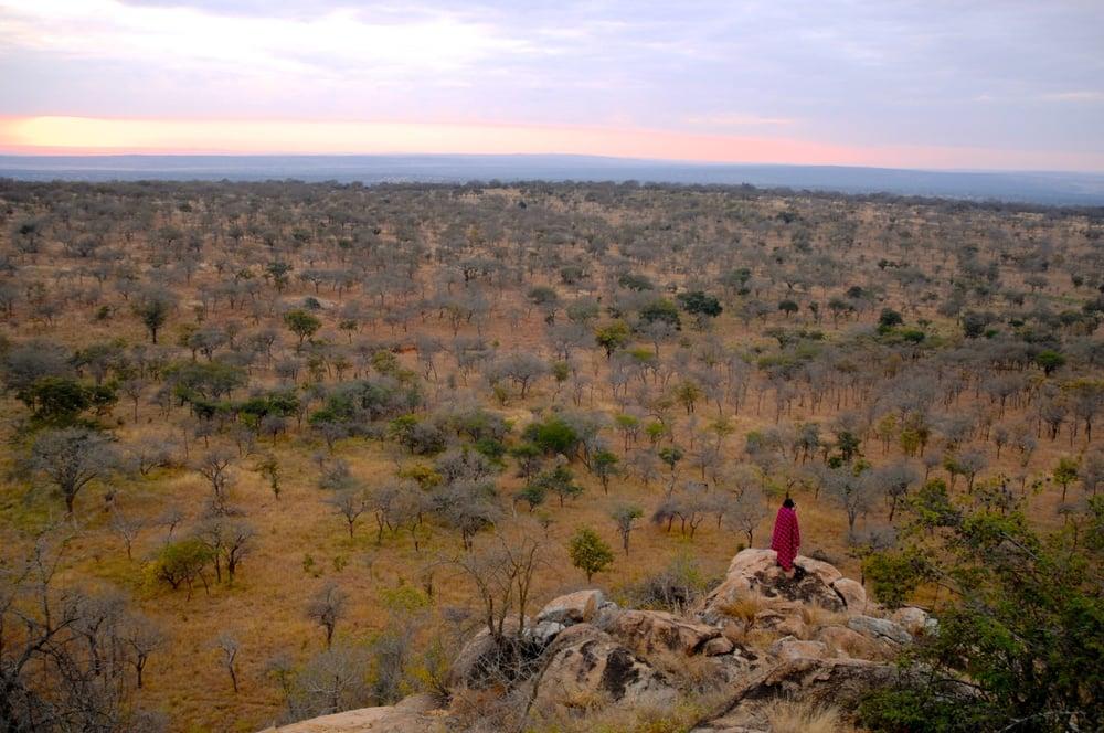 Tanzania, 2010