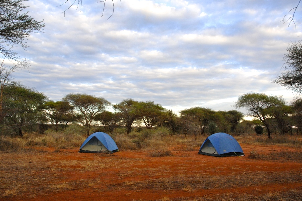 Camp in the savanna