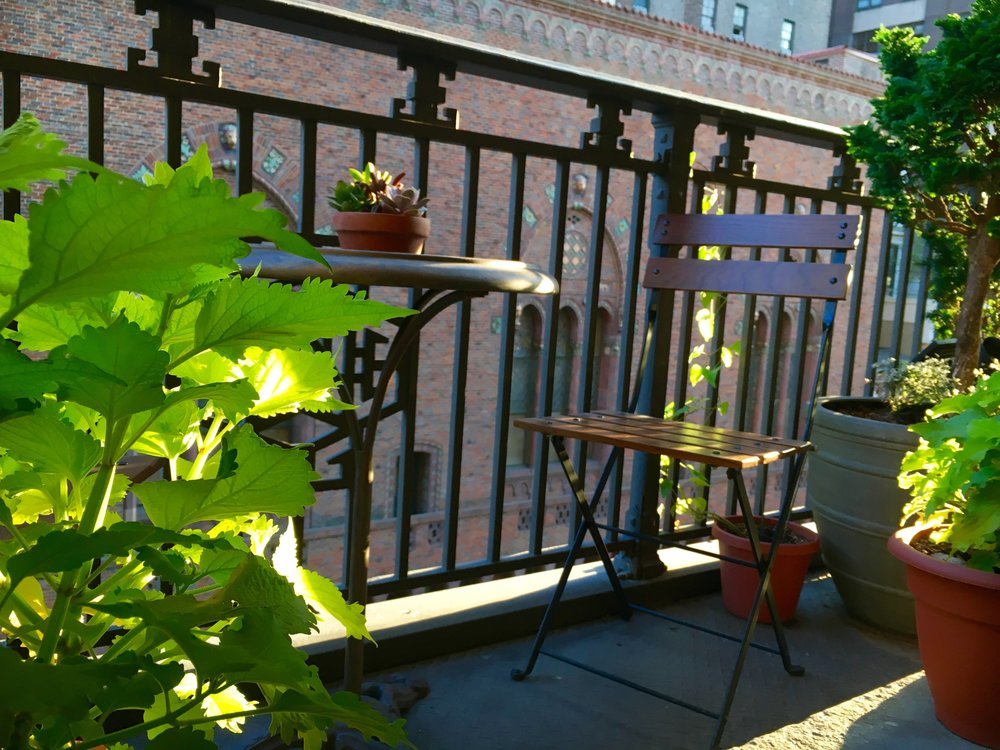 Afternoon summer sun on a Central Park West balcony.