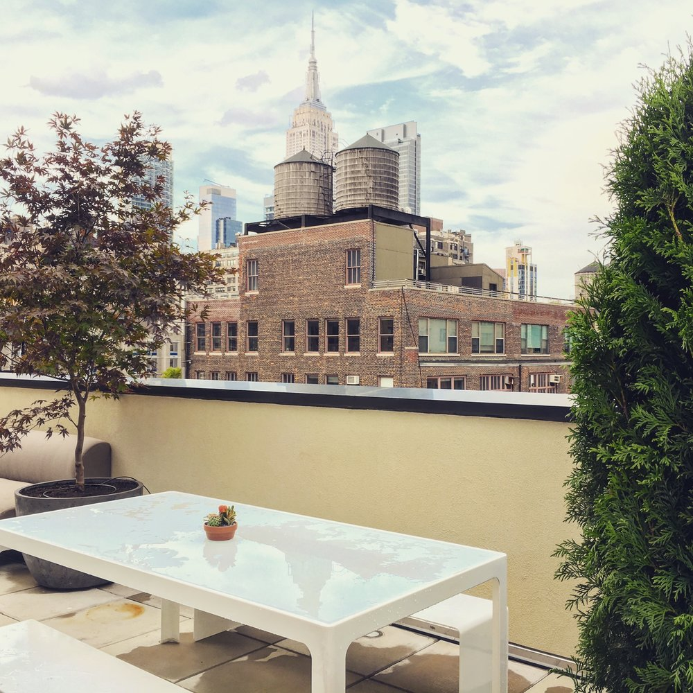 An arborvitae and Japanese maple frame this garden view of the Empire State Building.