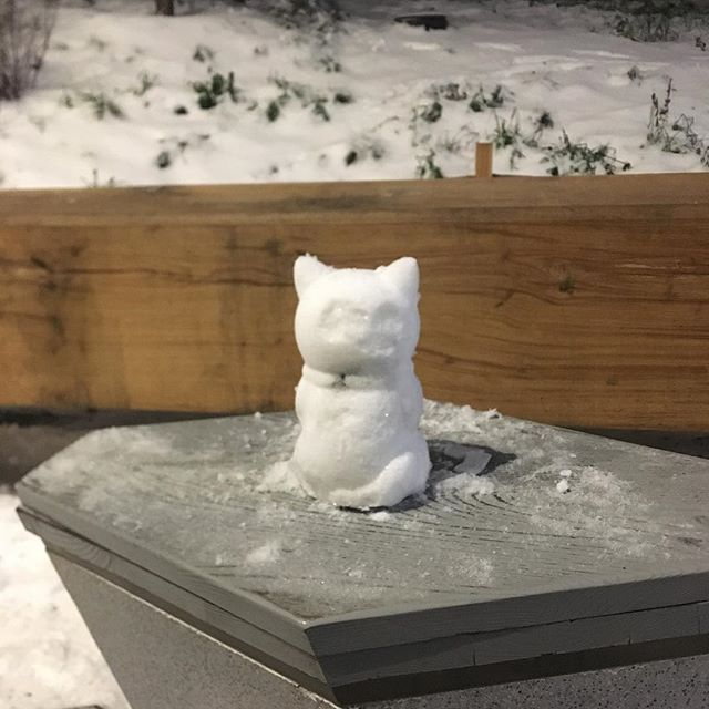 Merry Christmas everyone! Just found a random #snowcat near Kremlin