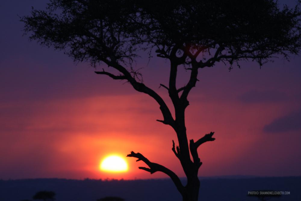 SUNSETAFRICA-3306.jpg