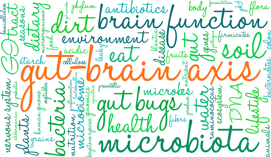 Maintaining a Healthy Gut Microbiome is Key to Resilient Health