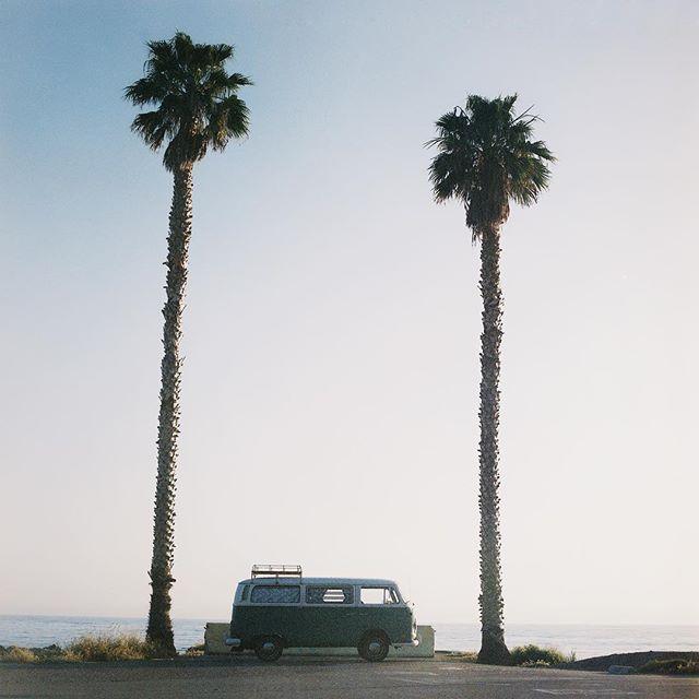 Summer vibes with #Seagullthebus 🌴🚌🌴 // 📷@scottgregerick #thatvanagain #filmisnotdead #hasselblad #cinestill120