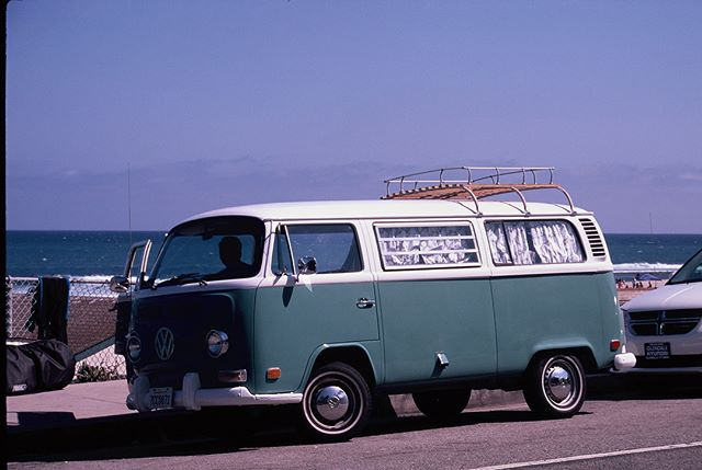 #seagullthebus and south swells make for a perfect combo. - #thatvanagain