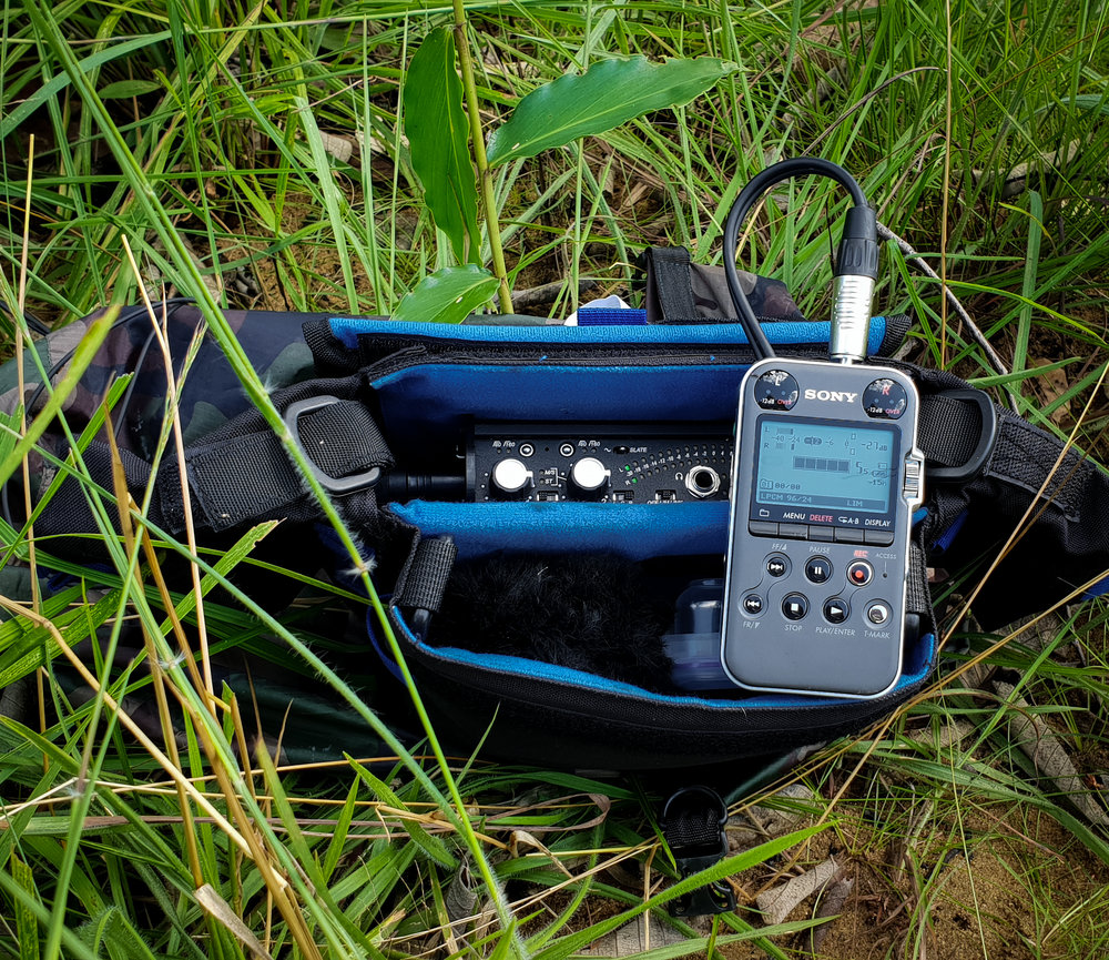 Sony PCM M10 with Sound Devices Mixpre-D in the Congo savanna