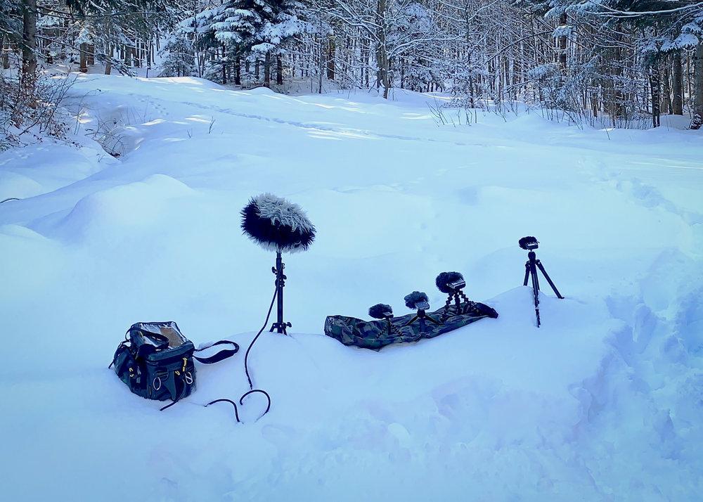 Recording ambience in Transylvania