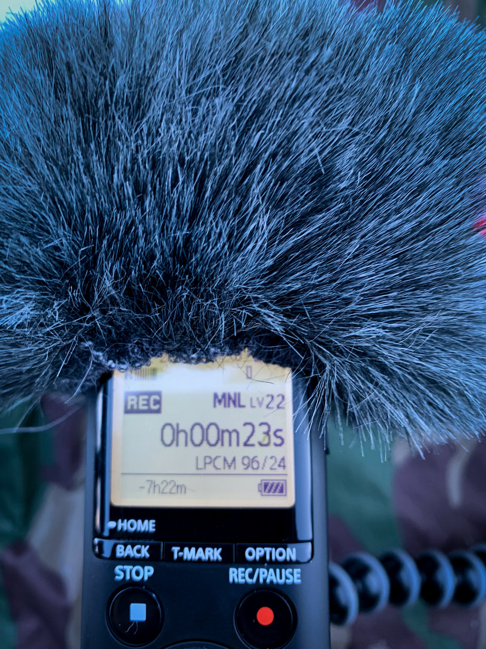 Sony PCM A10 in the field