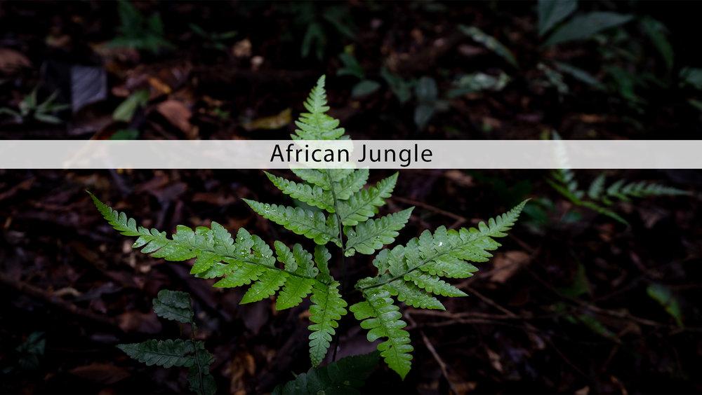 MAFX17 African Jungle banner.jpg