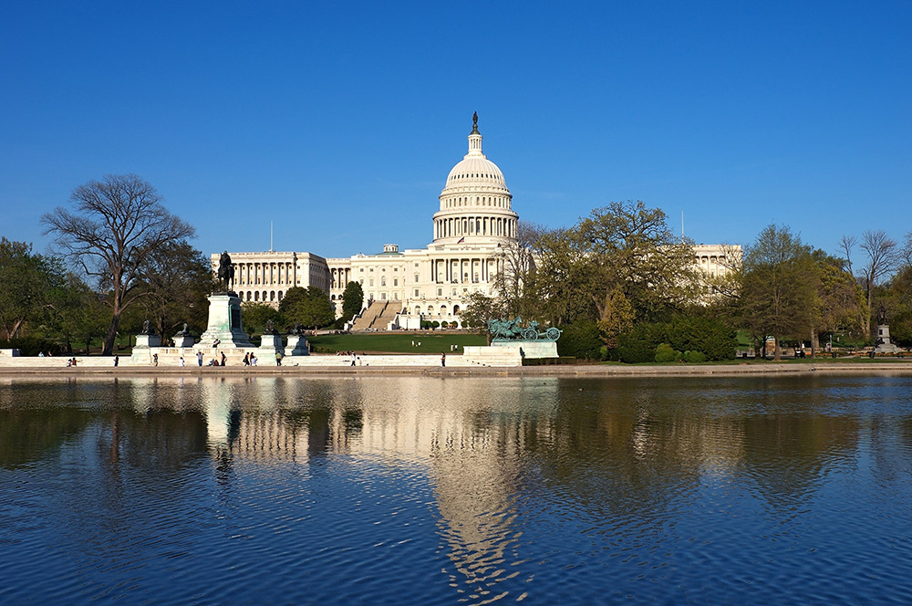 bigstock-US-Capitol--Capitol-hill-1000 x 600.jpg