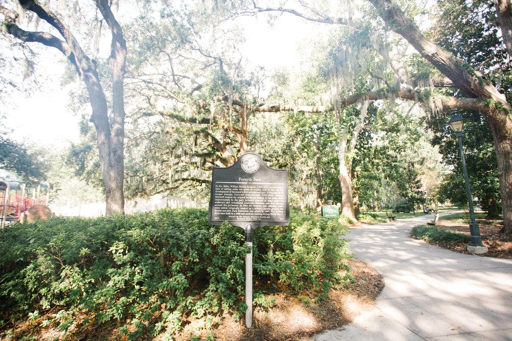 Savannah-15.jpg