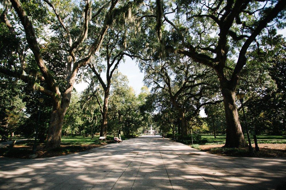 Savannah-12.jpg