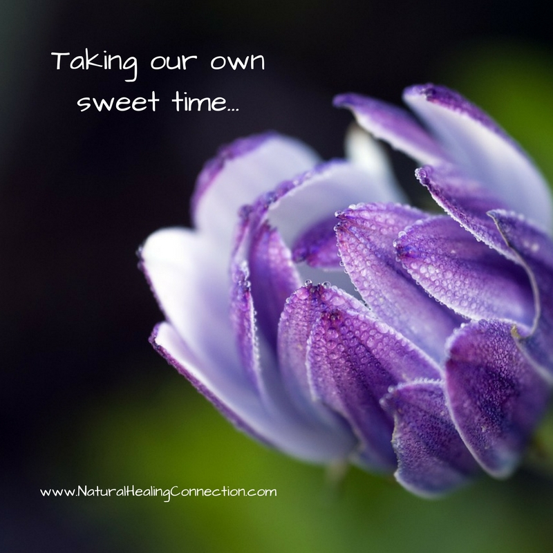 Taking our own sweet time....jpg