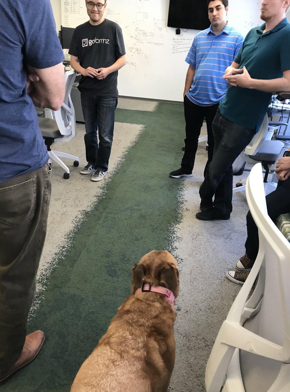 Alva leading the Engineering meeting