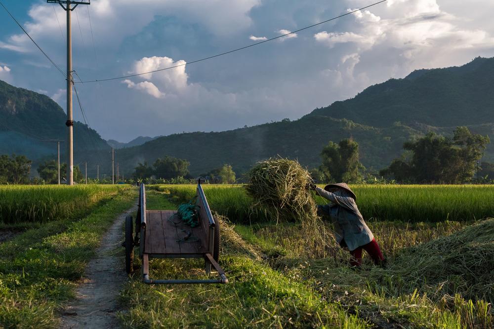 ThailandPhotos-042.jpg