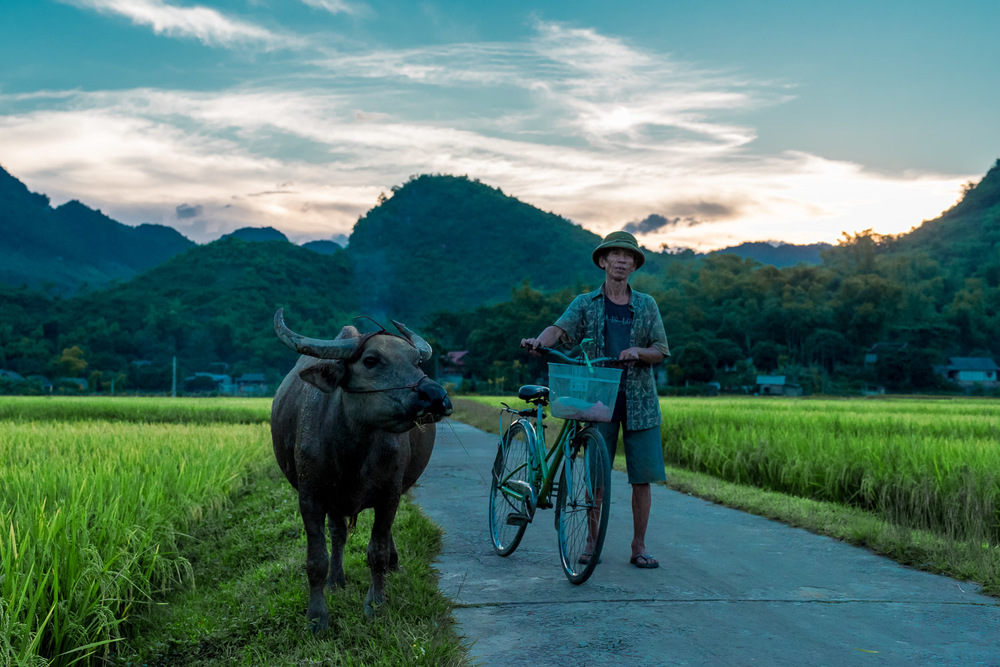 ThailandPhotos-046.jpg
