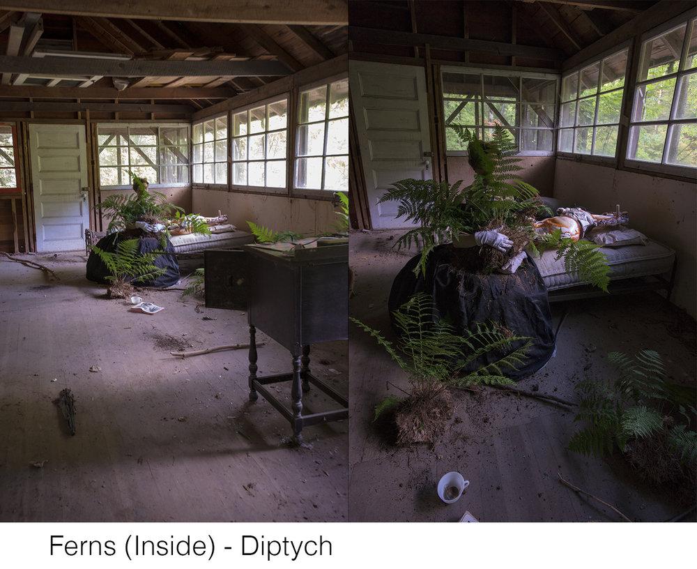 Ferns_(Inside)_Diptych_Title_WEB.jpg
