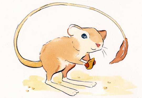 "Kangaroo Rat 1,   watercolor and ink on paper, 8"" x 10"",   $60"