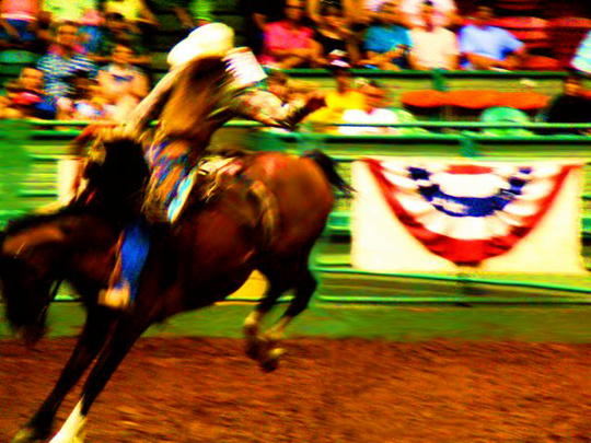 Texas Rodeo IV,   chromogenic print