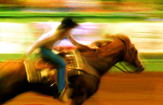 "Texas Rodeo I,   metallic c-print, 4"" x 6"",   $50"