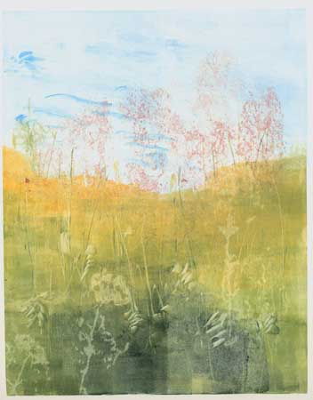 "Meadow, Joe Pye,   monotype, 16"" x 13½""   $200"