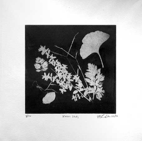 "Nature Study,   aquatint print, 10"" x 10""   $60"