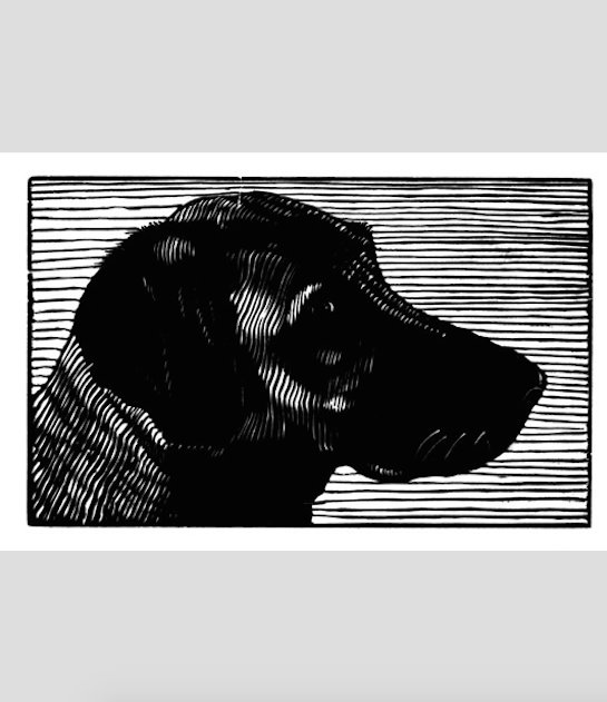 "Mack (4/25),  wood engraving print, 2¼"" x 3¾"" sold"