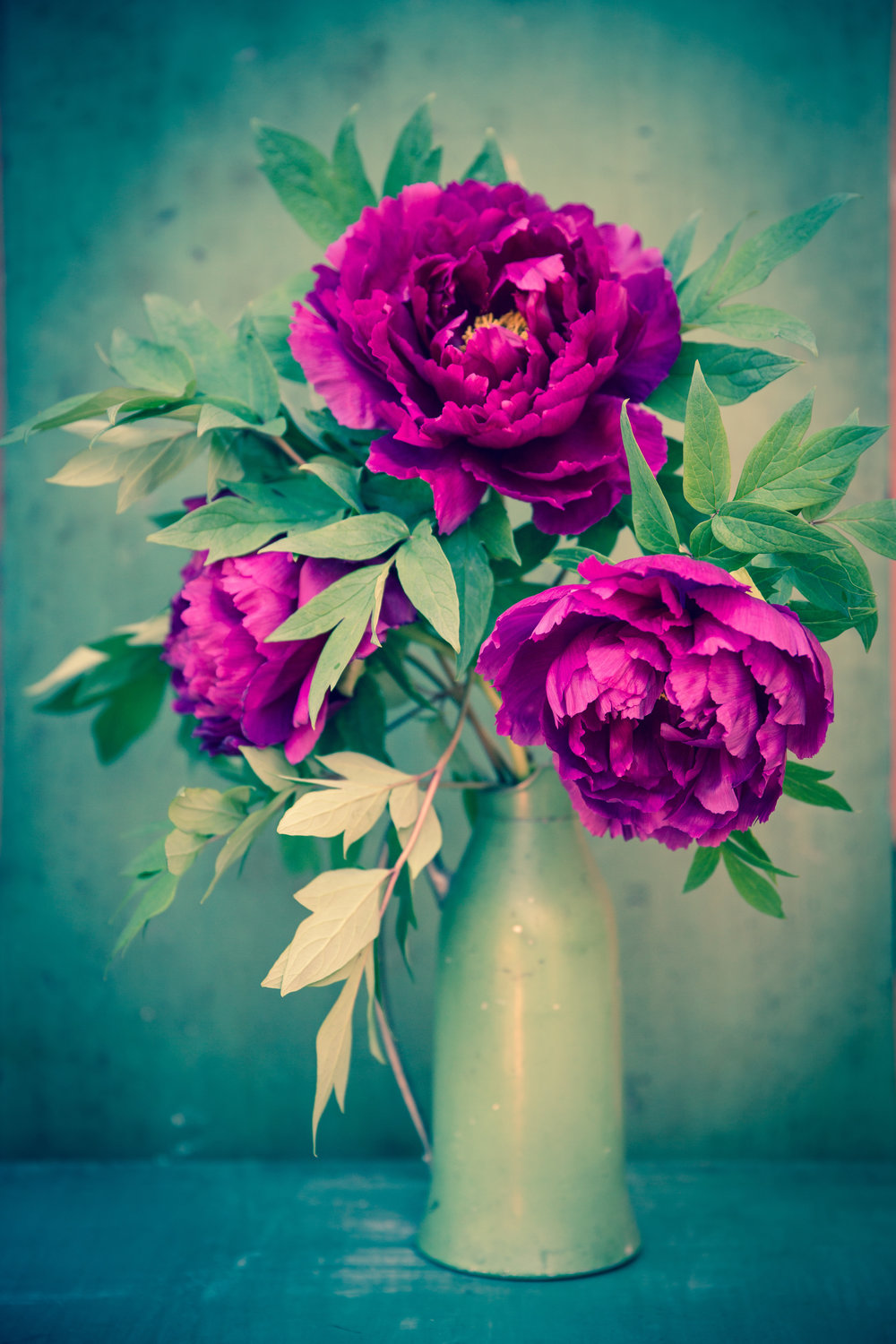 "Asia Kepka ,  Peony , archival inkjet print, mounted on wood with epoxy finish, 14"" x 11"", $275"