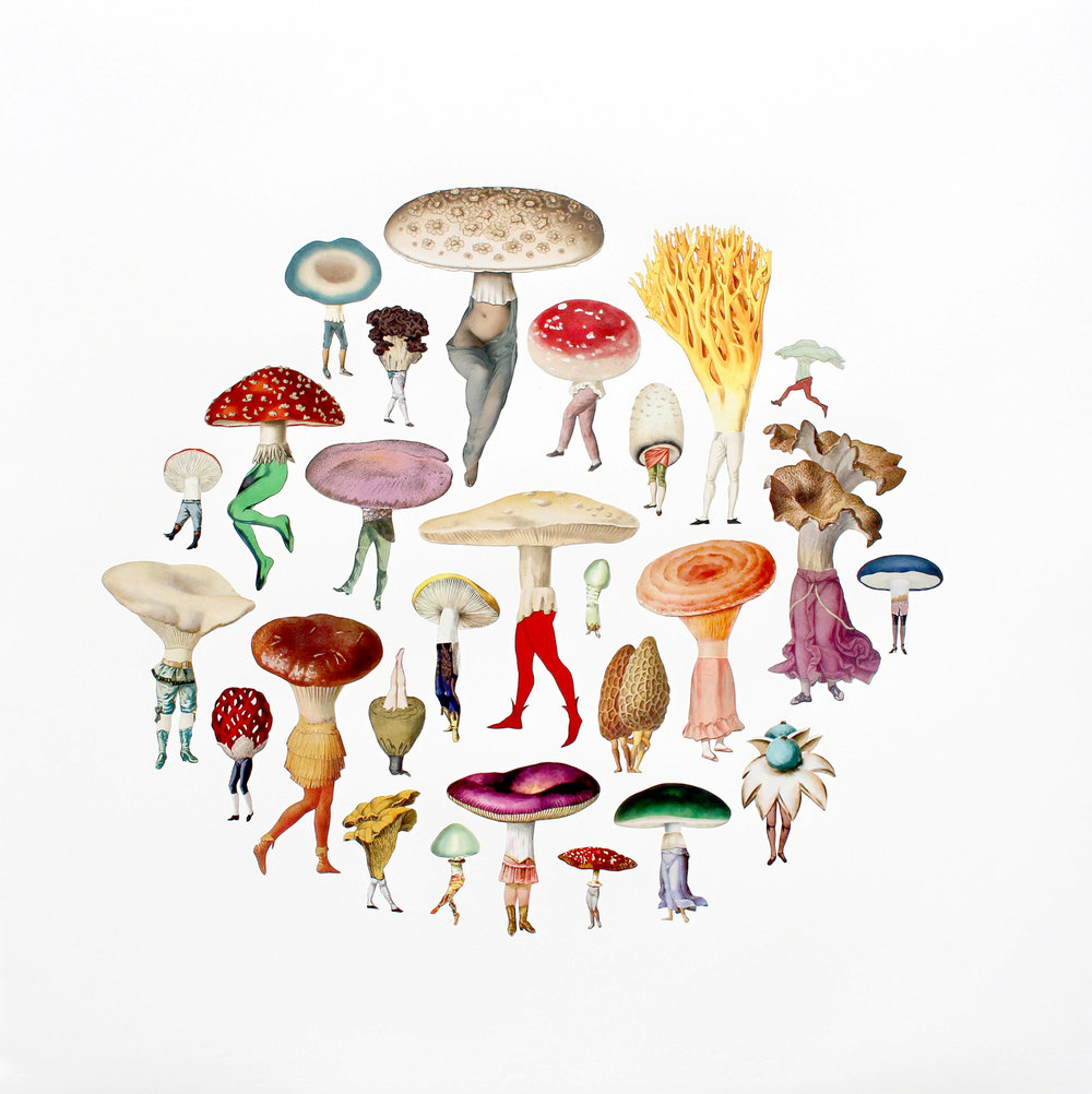"Mushroom Patch , collage on paper, 25 1/2"" x 25 1/2"" framed, $1,800"