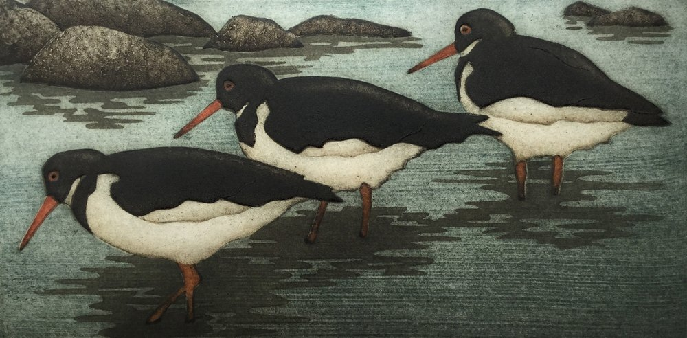"Oystercatchers  (30/40), collagraph on paper, 15 1/4"" x 20 1/4"" framed, $350"
