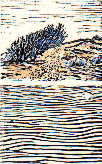 "Dans les Dunes  (7/8), linocut and watercolor14 1/4"" x 11 1/4"" framed, $175"