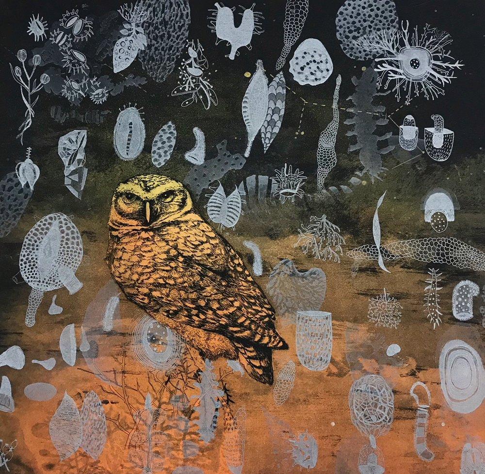 "Garden (Black/Orange) (A/P 1/1) , 2-plate etching, monotype, aquatint, 20 1/2"" x 20 1/2"" framed, $600"