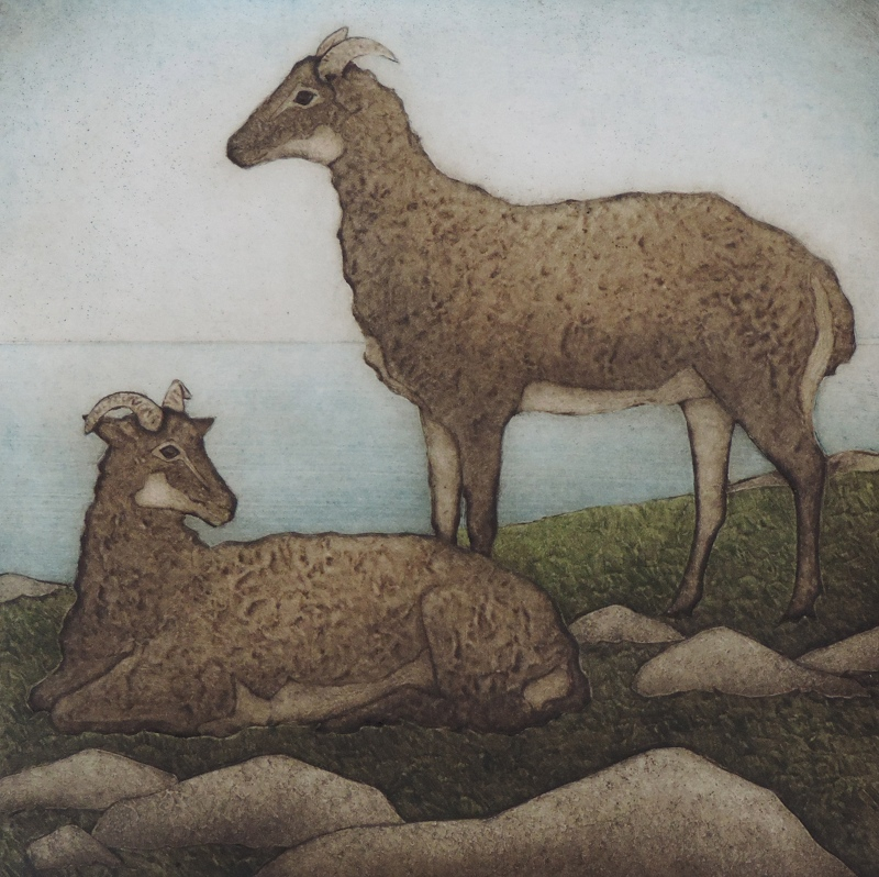 "Till & Soay (1/30) , collagraph on paper, 17 1/2"" x 15"", $300"