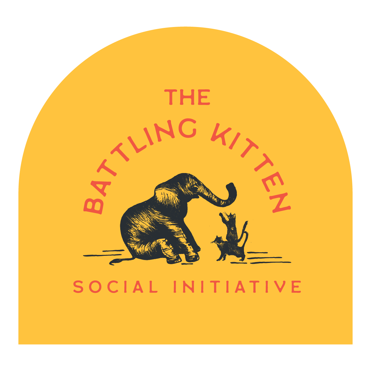 The Battling Kitten Foundation