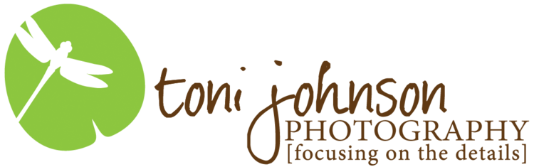 Toni Johnson Photography
