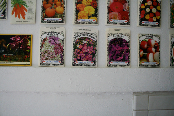 seed packets on kitchen wall