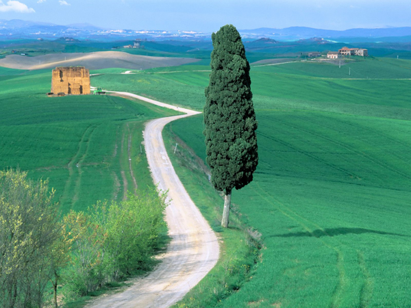 Country-Road-Tuscany-Italy
