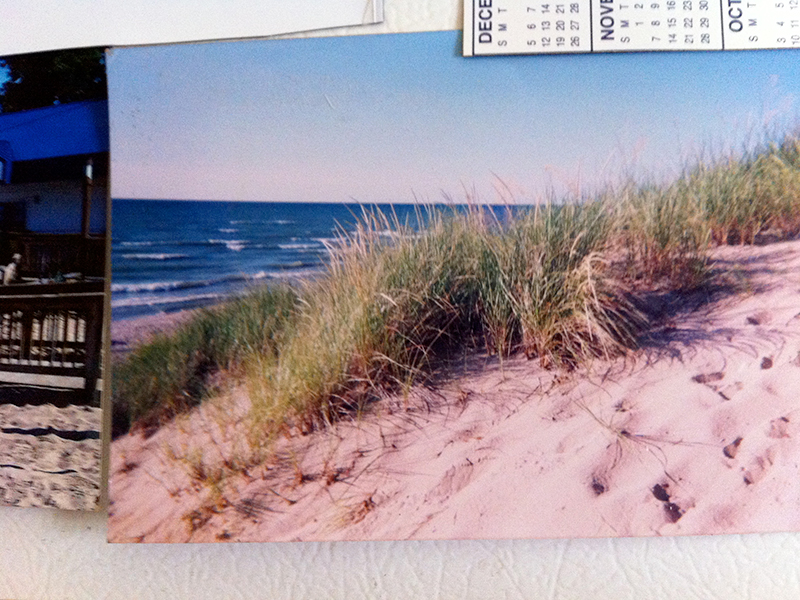 photo of sand dunes at the beach