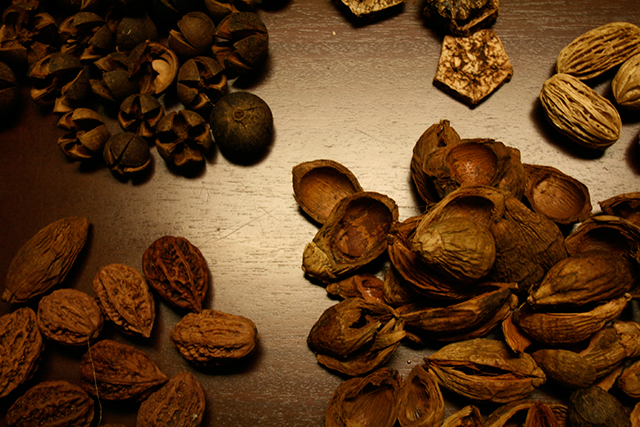 various nut materials to make thanksgiving table decorations