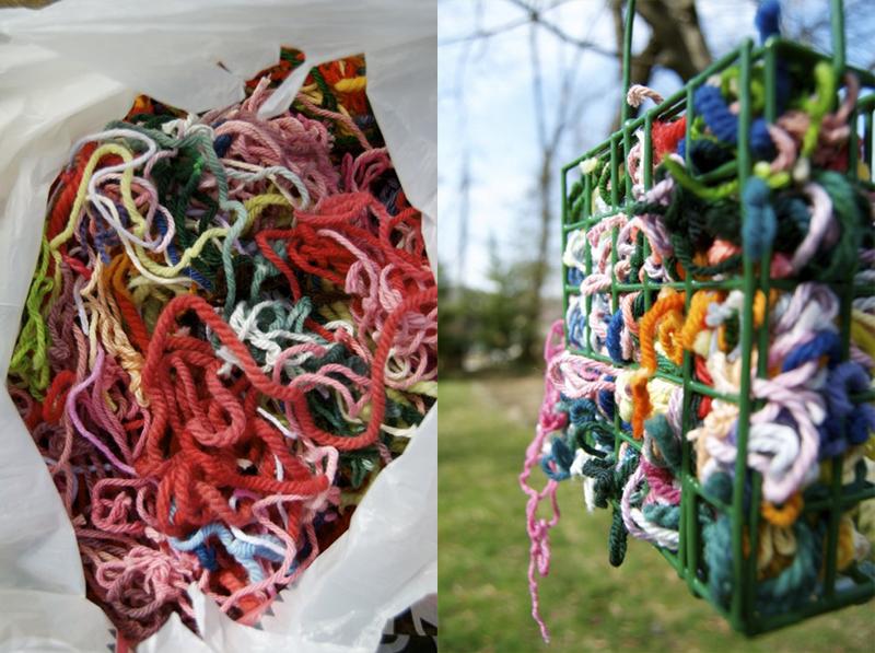 yarn suet birds