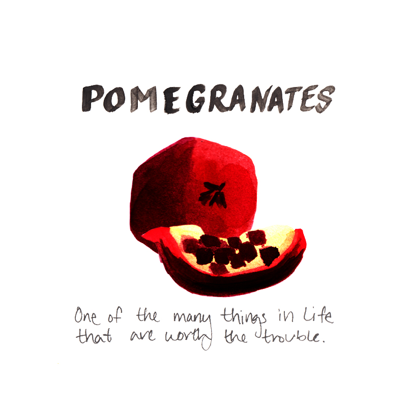 Pomegranates: One of the many things in life that are worth the trouble.