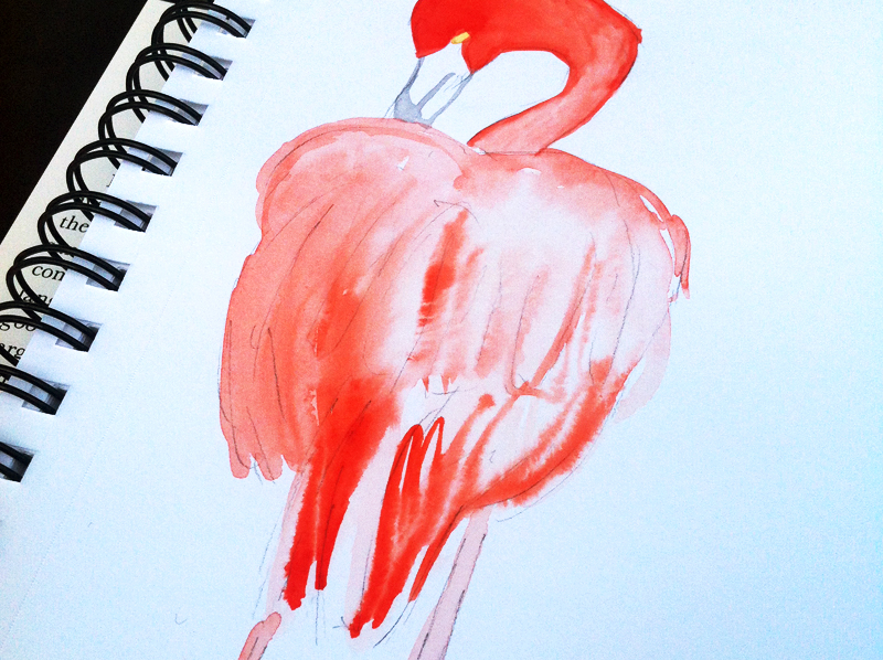 flamingo in watercolor