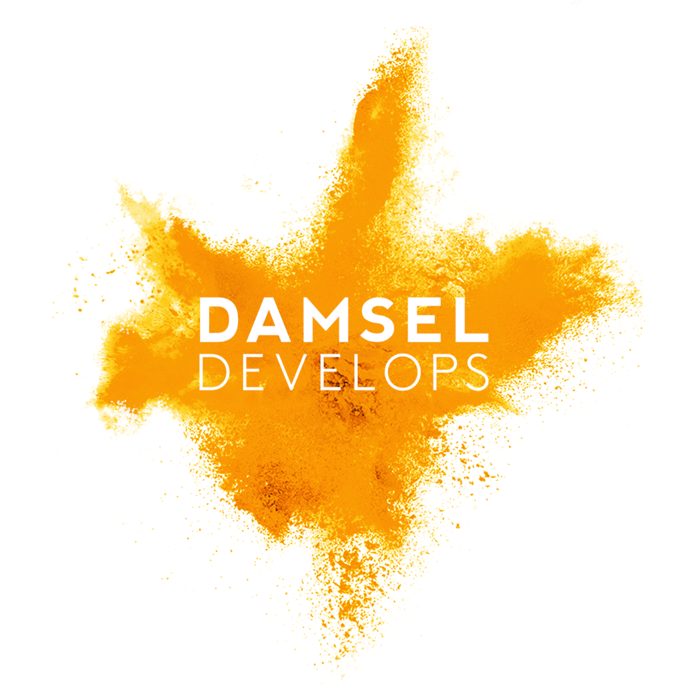 Damsel Productions 2017 Directorial Development Scheme