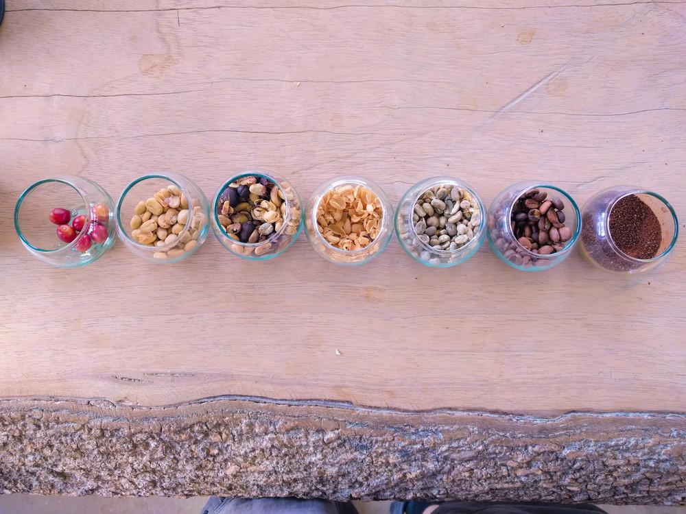 Salento- beans in glasses.jpg