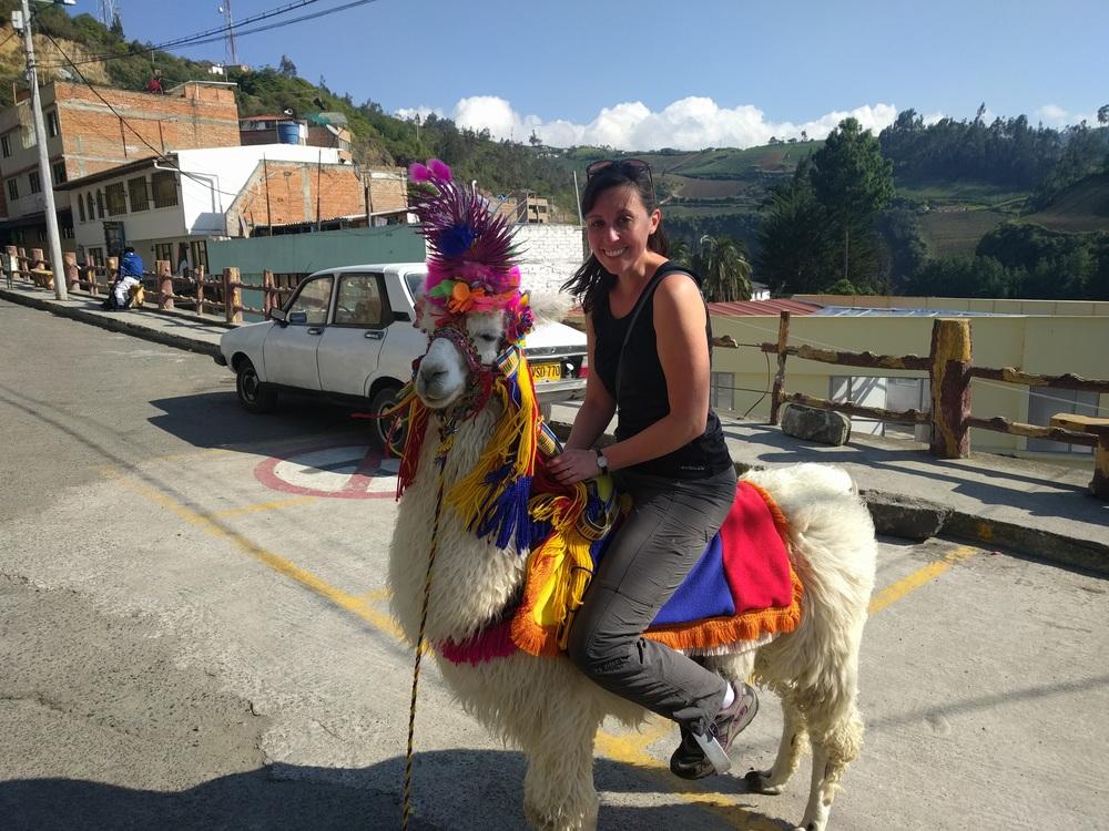 When I met the love of my life, Princess Llama.