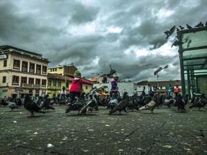 Cuenca-+kids+bird+square.jpg