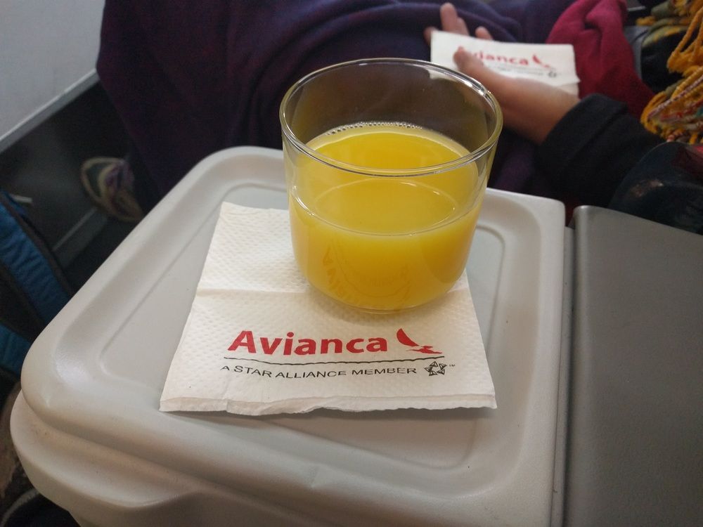 La Paz to Capetown: Avianca First Class OJ