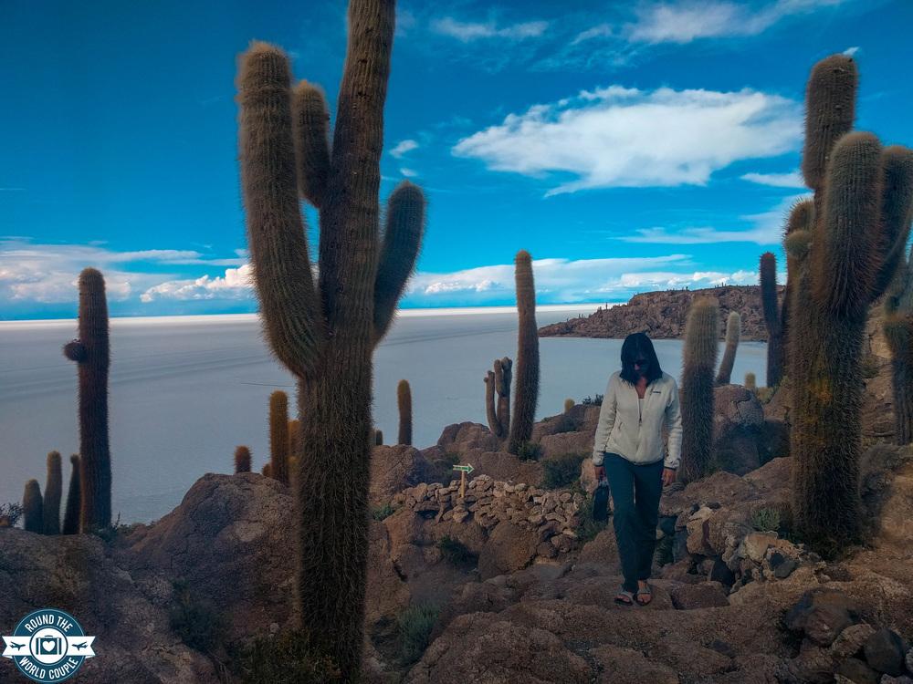 Salt Flats Cactus Island (1 of 1).jpg