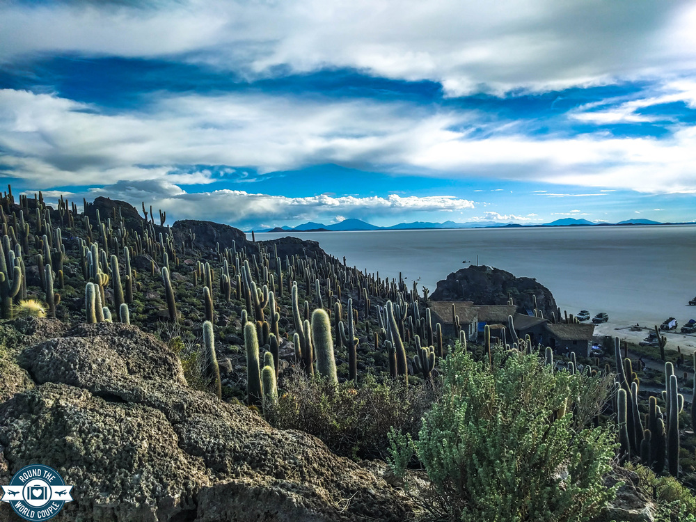 Salt Flats Cactus Island 3 (1 of 1).jpg